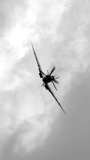 Black And White Blackandwhite Close-up Cloud Cloud - Sky Cloudy Airplane Environmental Conservation Freedom History Low Angle View Monochrome My Favorite Photo Nostalgia Outdoors Sky Spitfire Warbird Ww2 WW2 Memorial Ww2warbirds Awesome Performance Fighterplane Transportation Flying