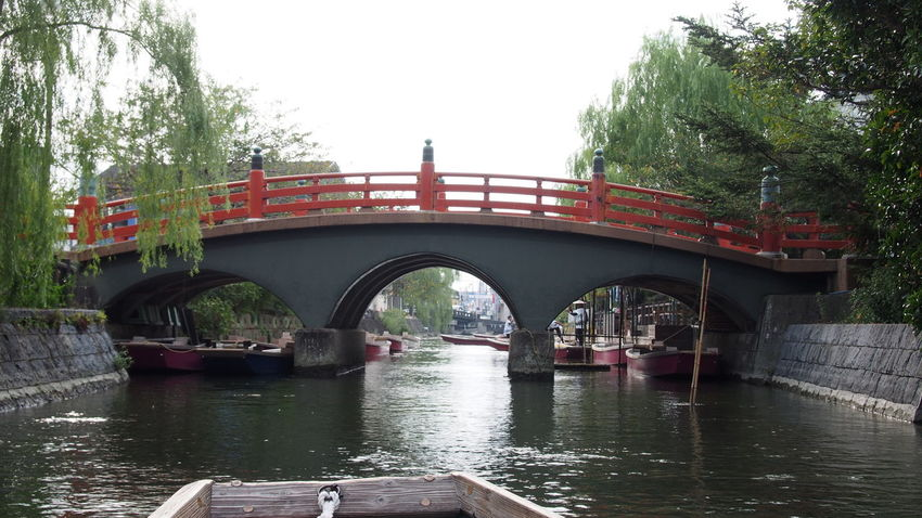Arch Arch Bridge Architecture Boating Bridge Bridge - Man Made Structure Clear Sky Connection Covered Bridge Engineering Footbridge Incidental People Mode Of Transport Nautical Vessel Outdoors Railway Bridge River Transportation Travel Tree Water Waterfront 川下り 柳川 柳川川下り
