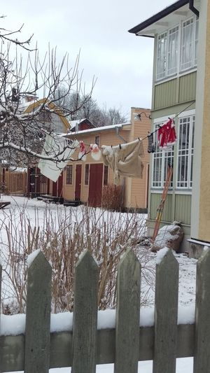 It's Cold Outside Cold Frost Frosty Frozen Clothes Hanging Wire Houses Sweden Scandinavia Scandia Snow Snow ❄ Winter Wintertime ⛄ Santaclaus Söderköping