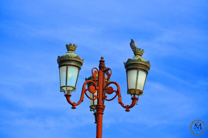 Right or left ? . . . . -- #bird#light#city#lamp#light#sky#blue#colors#red#green#right#left#choosejoy#rabat#morocco#africa#picoftheday#followme#colors_reaction#love#photography#photographer#nikon