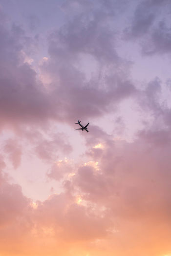 Low angle view of silhouette airplane flying against cloudy sky during sunset