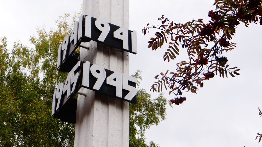Low angle view of numbers mounted on column by tree against sky