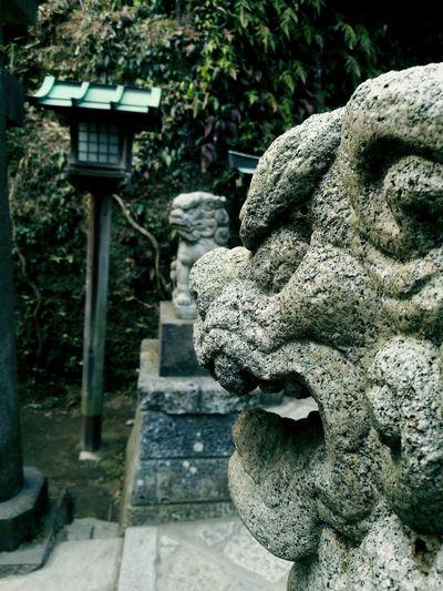 Stone Lion Shrines & Temples Zeniarai Benzaiten Ugafuku Shrine Kamakura Japan