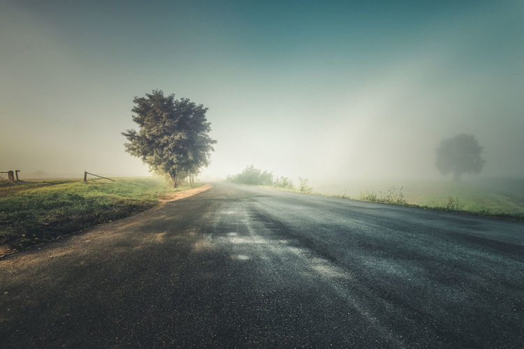 Beauty In Nature Field Foggy Morning Grass Landscape Nature No People Outdoors Road Scenics Single Lane Road Sky The Way Forward Tranquil Scene Tranquility Tree