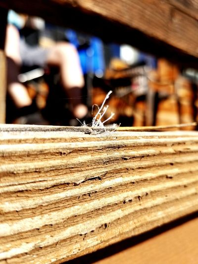 splintered and frayed. Porch Wood Splinter Split Frayed String Nature Brown Grain Woodgrain EyeEm Selects Industry Wood - Material Close-up Plank Wooden Tilt-shift