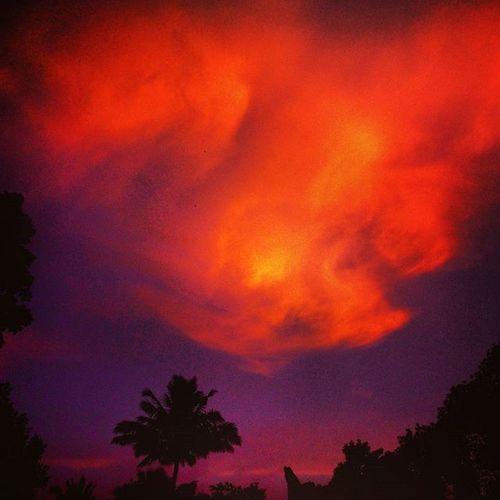 Sky Hot Dark Orange Special Photography HappyEvening Eveningclick MyClick Clouds 😘😘