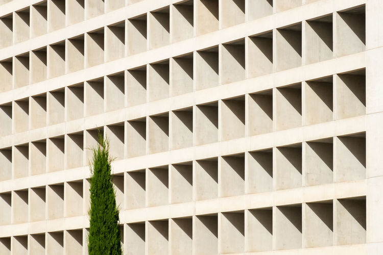Minimalist Architecture Minimal Minimalism Minimalist Pattern Shadows & Lights Shadows Architecture Built Structure Full Frame No People Repetition Building Exterior Day Nature Outdoors Building Backgrounds Design Growth In A Row Plant Shape Low Angle View Geometric Shape Sunlight