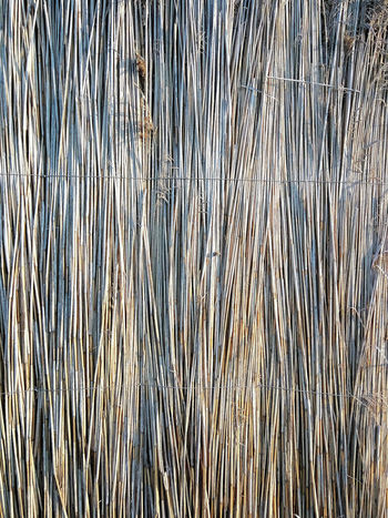 Reed Wall From Reed Seaside Pattern, Texture, Shape And Form Golden Hour Sand & Sea Beach
