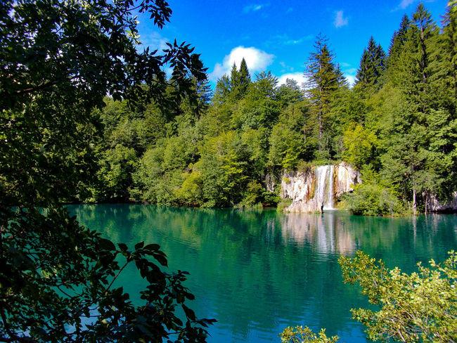 Plitvice, Croatia, 07-17 Croatia Croatia ❤ Croatia ♡ Croazia Kodak Kodakpixpro Kodak Pixpro EyeEmNewHere Plitvice National Park Plitvice Lakes National Park Plitvice Nature UNESCO World Heritage Site Unesco Unesco World Heritage Forest Reflection Sky