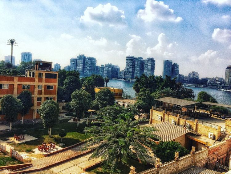Building Exterior Architecture Built Structure Tree City Roof Thisiscairo Thisisegypt Cairo Egypt Cityscape Sky Outdoors No People Growth Residential Building Day Nature