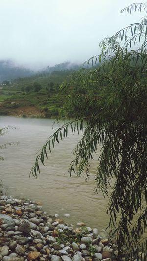 September rain River Mist Rain Mermaids