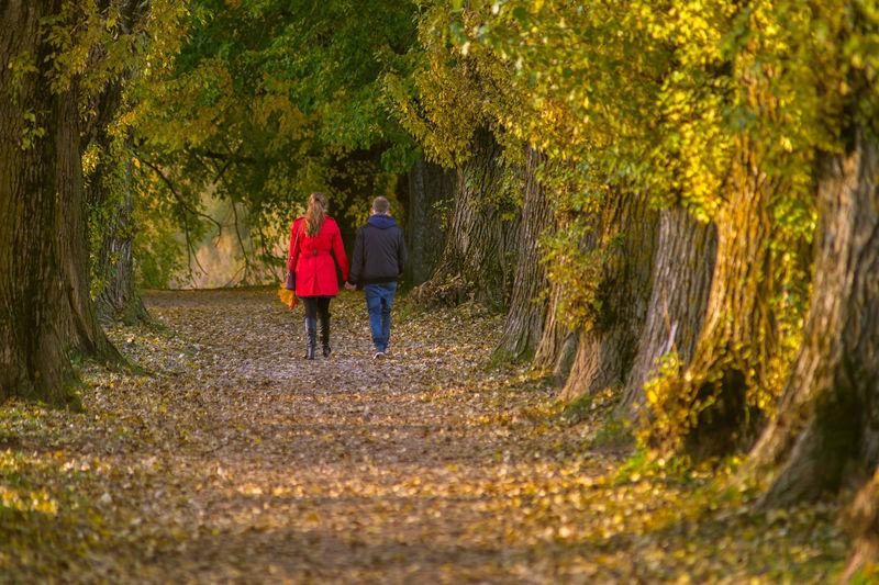 Tartu Autumn