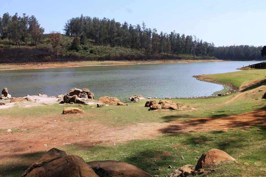 River behind pine wood near Ooty, Tamilnadu, India. Extremely wonderful Beauty In Nature Day Environment Forest Growth Lake Land Landscape Nature No People Non-urban Scene Plant Scenics - Nature Sky Tranquil Scene Tranquility Tree Water