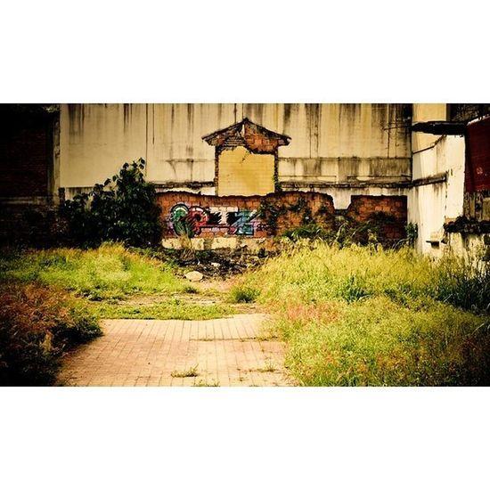 ...! Graffitiart Graffiti Encuentrofotografiaexperimentalcali Fotografiaexperimental Walkingstreet Urbanphotography Streetphotography Oeste Santateresita Cali Colombia Nikonphotography Nikoncolombia