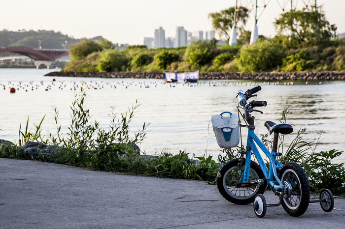 Boat Bycicle Calm Escapism Getting Away From It All Han River Korea Lake Lakeshore Lakeside Outdoors Pond Recreational Pursuit Reflection Rippled River Riverbank Seonyudo Seoul Standing Water Tree Vacations Water Waterfront Weekend Activities