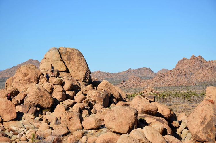 Adventure Beauty In Nature Boulders California Clear Sky Climbing Desert Hiking Joshua Tree National Park Miniscule Monoliths Mountain Nature Outdoors Rock Climbing Sky Let's Go. Together. Lost In The Landscape