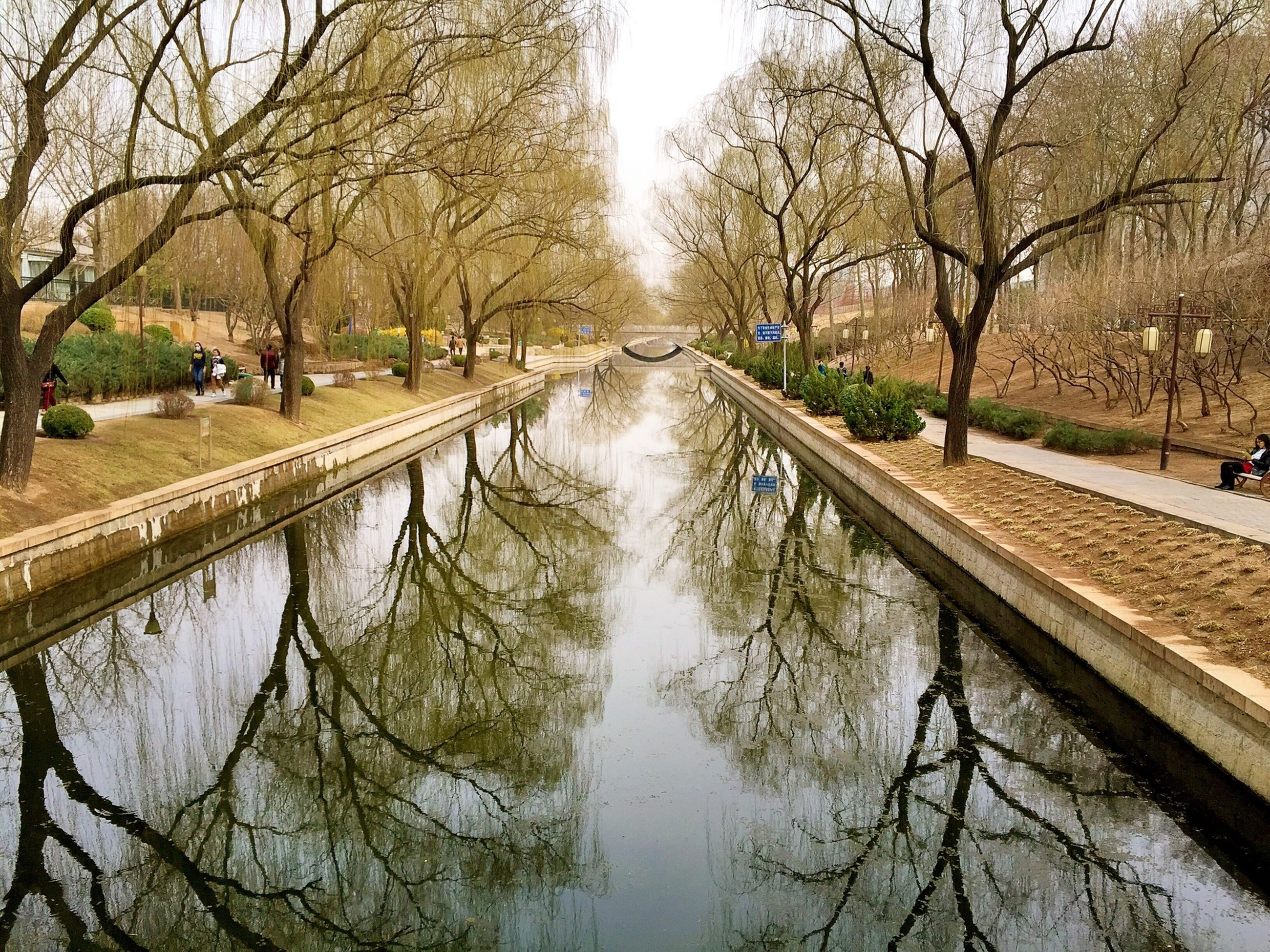 tree, water, bare tree, reflection, canal, branch, built structure, diminishing perspective, architecture, waterfront, river, tranquility, building exterior, nature, the way forward, day, connection, lake, outdoors, transportation