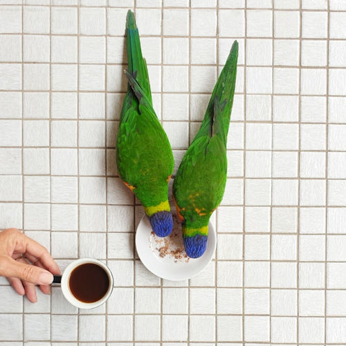 High angle view of coffee cup on floor