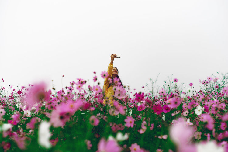 Hey flowers, take selfie w me!!! Beauty In Nature Blooming Blossom Flower Flower Head Flowering Plant Freshness Girl Human Nature Pink Color Plant Selective Focus Selfie Wildflower