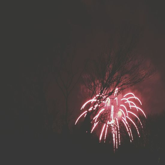 Happy New Year! Wpphoto 2014 Enjoying Life Taking Photos