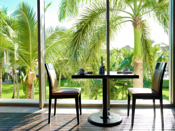 Empty chairs and table by palm trees