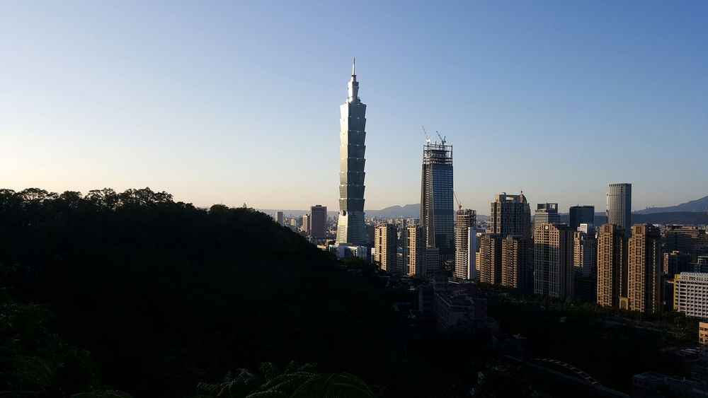 101 Taipei 象山步道 象山101 Sky Outdoors Tree Nature Tree Rear View First Eyeem Photo