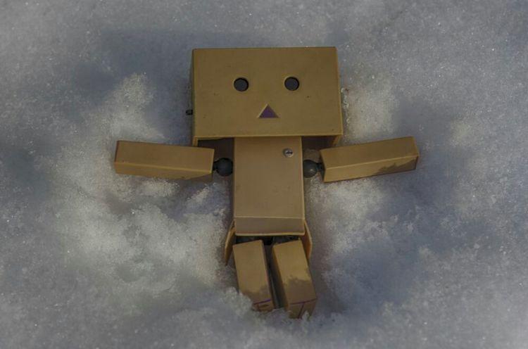 Danbo love Snowangel Deepfreeze