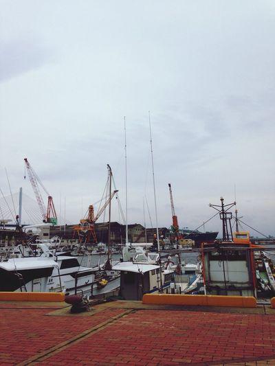 漁師さんが話し合う声。鳥の鳴き声。船が揺れる音。波の音。遠くの車の音