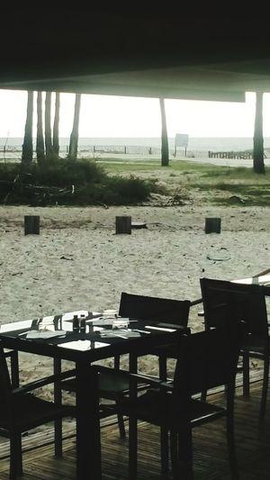 Beach Nature Horizon Over Water Table Poste De Travail My Job Restaurants La Lagune La Teste-de-Buch Bassin D'Arcachon