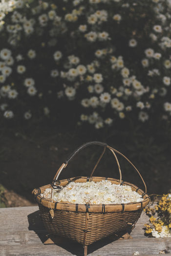Close-up of basket on table