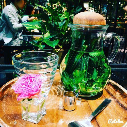 Beautiful Tea Tea Time Herbs