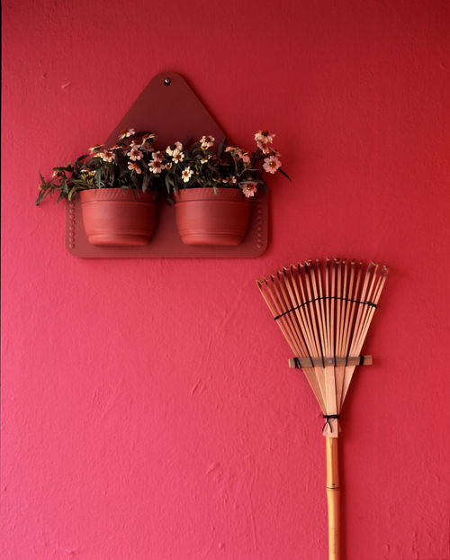 Color wall in my garden Broom Pink Walking Around Background Day Flower Indoors  No People Red Swab Texture