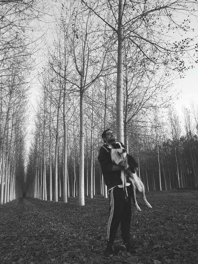 ♥️ Tree