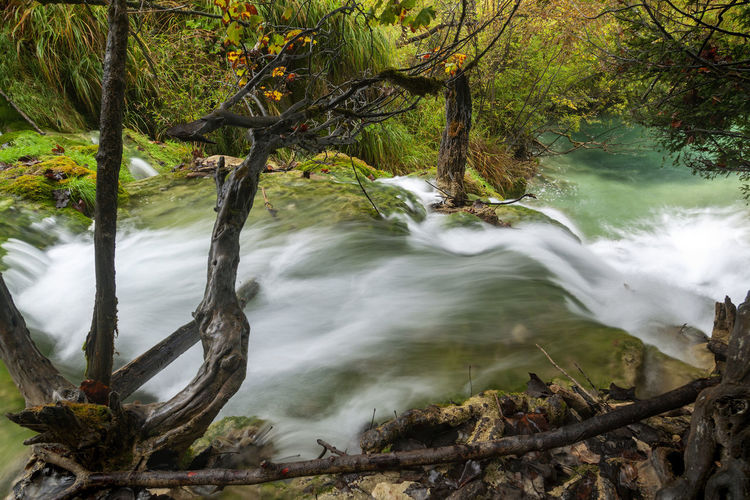Autumn on waterfalls of the plitvice lakes, croatia