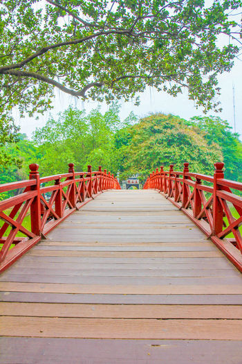Red Bridge in Hanoi Red Bridge Hanoi Hanoi Vietnam  Red Bridge Hanoi Hoan Kiem Lake Hoan Kiem Bridge Hoàn Kiếm Vietnam Tree Plant The Way Forward Direction Bridge Built Structure No People Day In A Row Nature Growth Architecture Railing Bridge - Man Made Structure Diminishing Perspective Red Wood - Material Outdoors Connection Footbridge Long