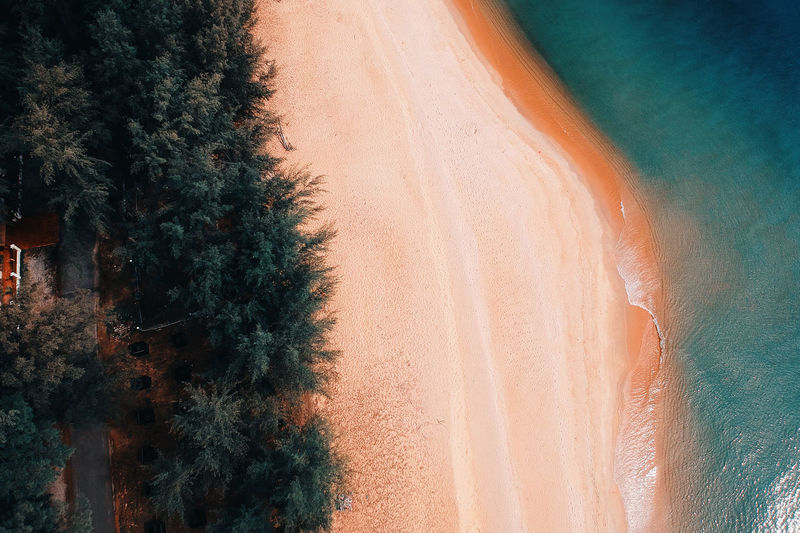 Arid Climate Beauty In Nature Day Desert Full Frame Growth Land Landscape Nature No People Non-urban Scene Outdoors Plant Sand Scenics - Nature Sunlight Tranquil Scene Tranquility Tree Water