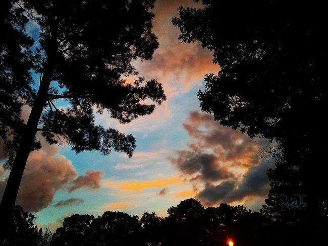 Amazing Mississippi sunset