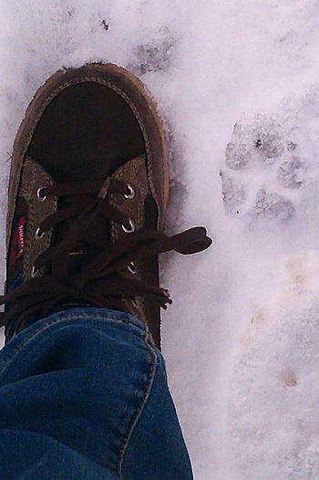 FootPrint Snow Shoes