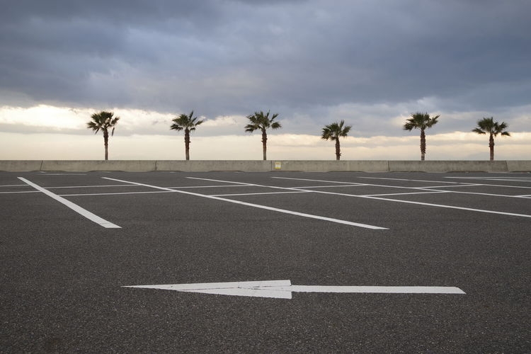 Empty road by palm trees against sky
