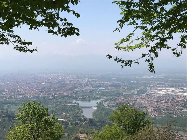 Torino No Filter Vista Dall'alto Torino Superga Piemonte Italy Tree Plant Sky Architecture City Building Exterior Nature Built Structure Cityscape Water Day Growth Outdoors Beauty In Nature Branch High Angle View
