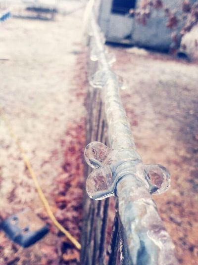 ice covered barbed wire Barbed Wire