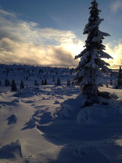 Skiing in Norway @Hafjell ❄️🎿 Snow Nature Sky