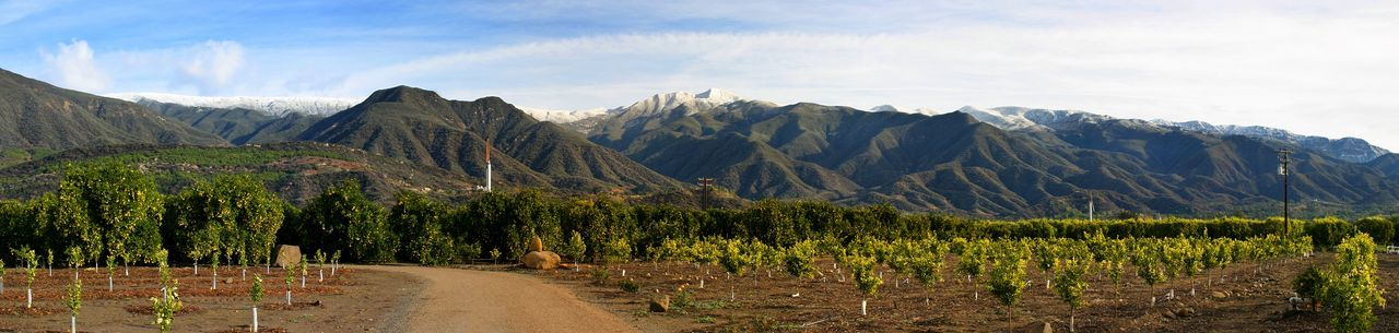 Ojai Valley With Snow Landscape shot of the Ojai valley with snow on the mountains. California Clouds Cold First Eyeem Photo Forest Green Ice Landscape Mountain Mountains Nature Ojai Outdoor Outdoors Panorama Scenery Scenic Sky Snow Snowy Tourism Travel Valley Water Winter