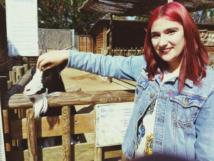 Faunia Madrid Girl Make Up Enllamas Pelirroja Redhair Smile Zoo Animal Cabra