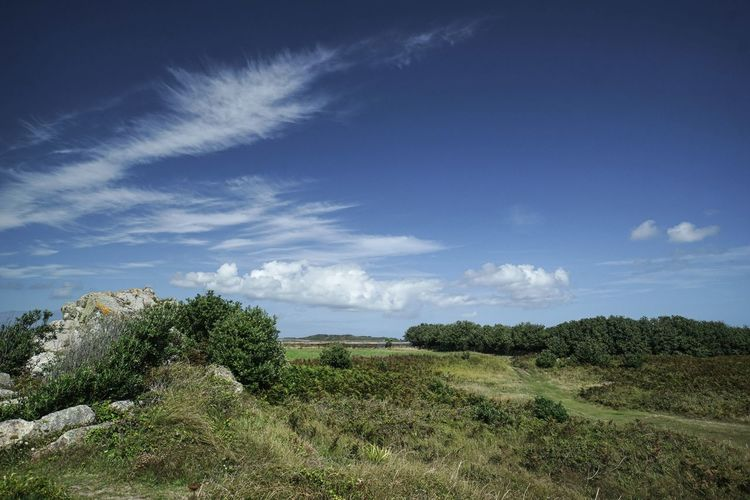 coastal path Distant Sea Lonely Path Trees Blue Sky With Clouds Deserted Grass Rocks And Water No People Peaceful Summer