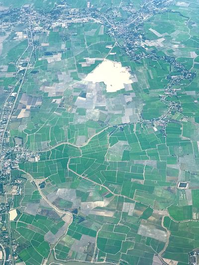 Rice fields view on the plane Aerial View Backgrounds Scenics Non-urban Scene Landscape Physical Geography Rural Scene Patchwork Landscape Nature No People Outdoors Day