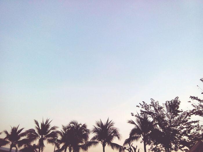 อีกนานแค่ไหน....จนกว่าฉันจะถึง Taking Photos Sky And Clouds Nature Goodevening