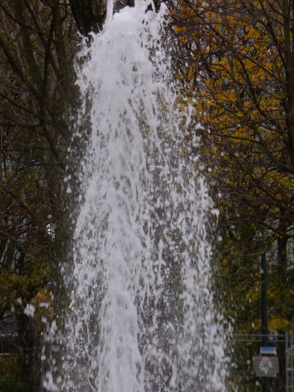 motion, tree, nature, water, long exposure, beauty in nature, outdoors, day, no people, spraying, scenics, blurred motion, power in nature, forest, waterfall, close-up