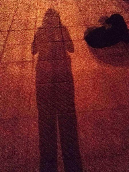 Shadows & Lights Shadows And Backlighting Shadowself Shadow On The Floor Streelights Nightlife Nightshadow Shadow Photography Shadow Me Shadowstandoff Illuminated Darkshadows PhonePhotography
