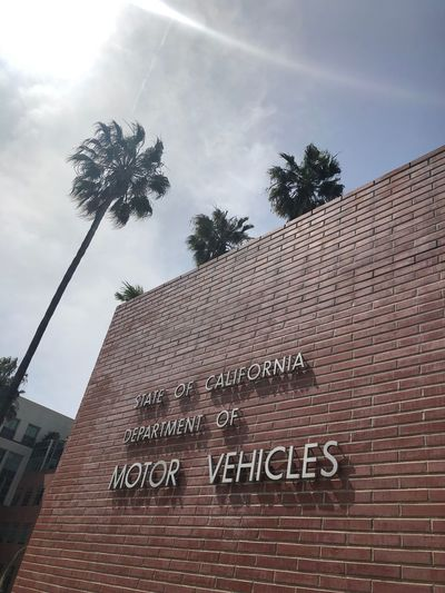 This'll take a while… ;-) #DMV #SantaMonica Text Architecture Building Exterior Built Structure Communication Tree Plant